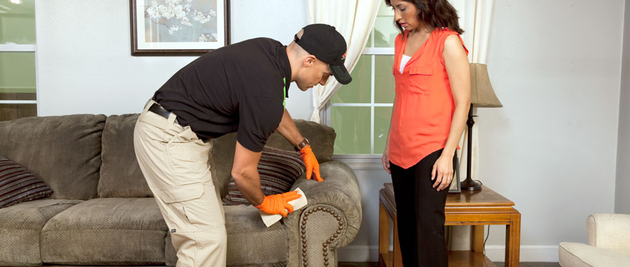 Freehold, NJ carpet upholstery cleaning