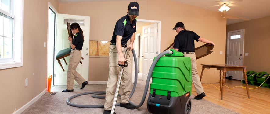 Freehold, NJ cleaning services
