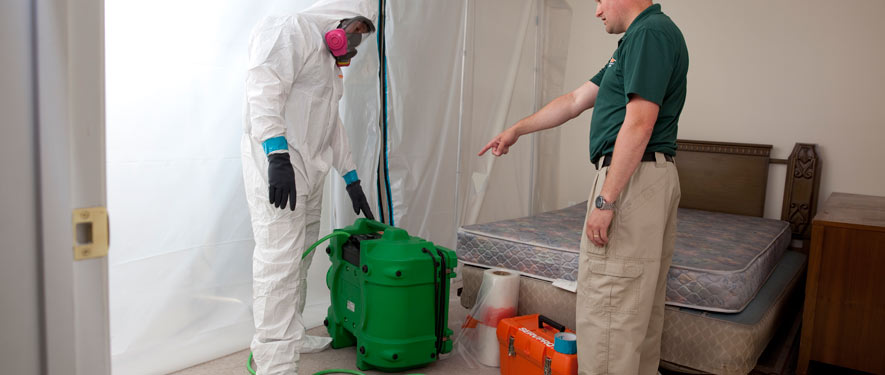 Freehold, NJ mold removal process